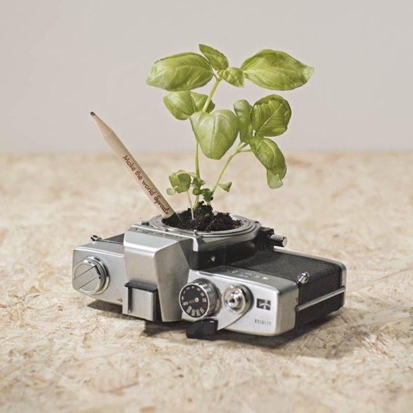 Lápiz_semilla_Sprout_2