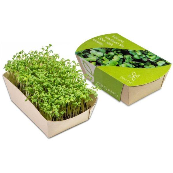 Mini_eco-jardin_berros_con_packaging