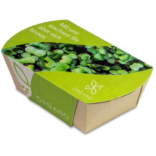 Mini_eco-jardín_portada
